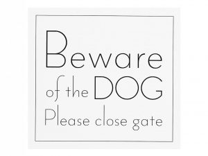 beware of dog white front